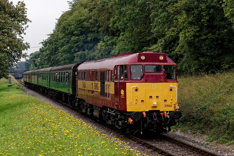 31466 at College Crossing, with the 10:35 Alresford - Alton, on 5th September 2014.