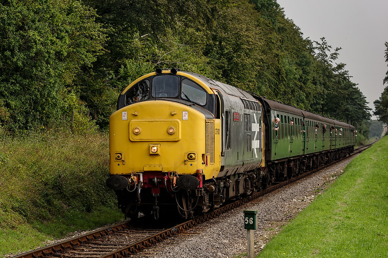 37901 at Milepost 56, with the 11:00 Alton - Alresford, on 6th September 2014.