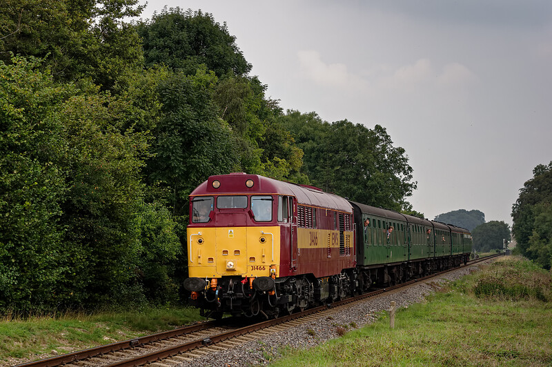 31466 at Stable Lane, with the 13:40 Alton - Alresford, on 6th September 2014.