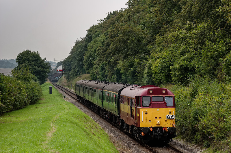 31466 passes Ropley Down Outer Home signal, with the 12:35 Alresford - Alton, <br /> on 6th September 2014.