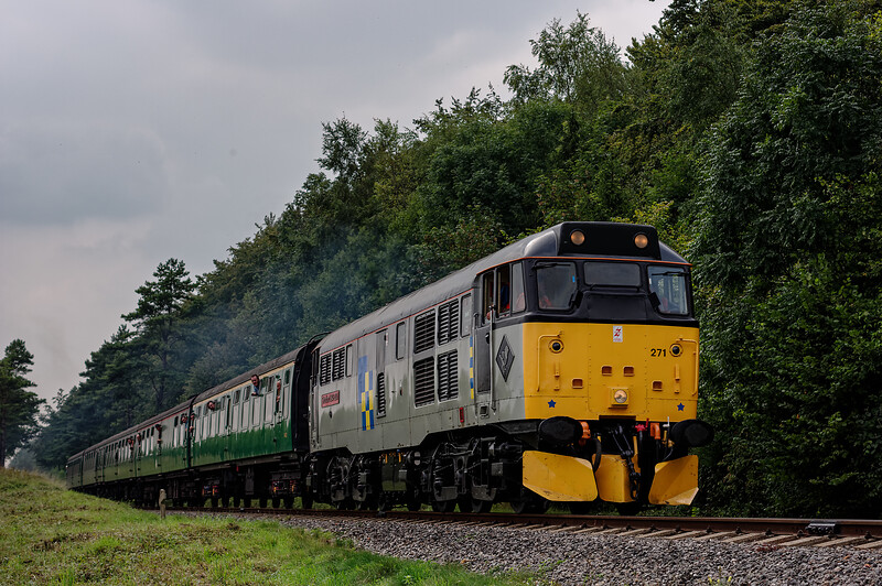 31271 exits the Pine Trees, with the 14:35 Alresford - Alton, on 6th September 2014.