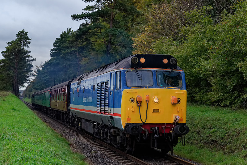 50027 exits the pine trees with the 10:25 Alresford - Alton, on 20th October 2017.