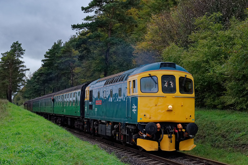 33202 exits the pine trees with the 09:45 Alresford - Alton, on 20th October 2017.