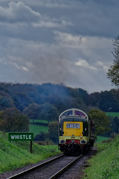 55002 at Wanders Crossing, with the 14:25 Alresford - Alton, on 22nd October 2017.