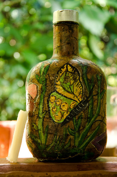 Bottle of Guaro. Costa Rican Moonshine made from sugar cane (thats a stick of sugar cane leaning against the bottle)