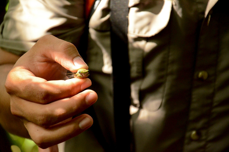 gary holding a cicada