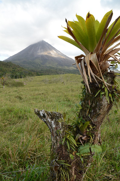 We start a short hike around Arenal lake. Its a great week for viewing the volcano as the skys remain clear enough to be able to see the volcano unlike the month before when it was shrouded in fog for a whole week.