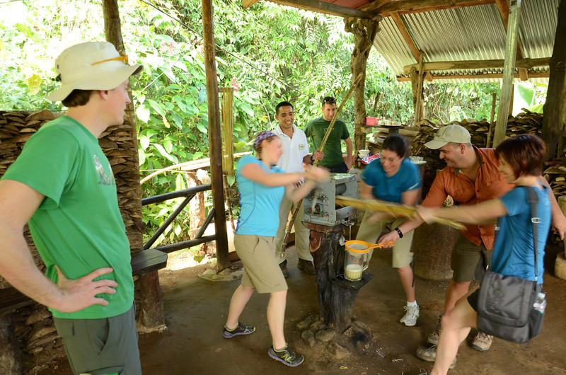 putting the ladies to work hand pressing sugar cane juice