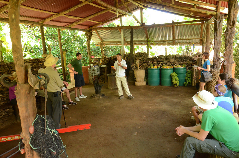 learning a little about local fruits and veggies