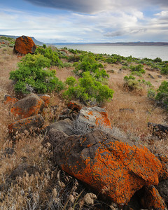 """The Lichen Rocks of Lake Abert"" - Lake Abert, OR"