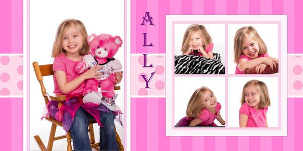 Ally 4 x 8