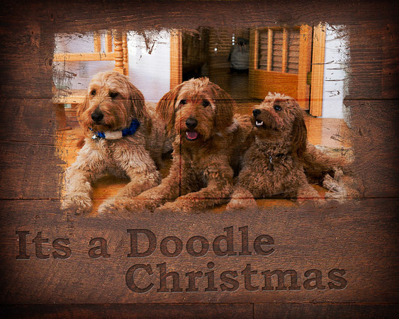 Doodle Christmas