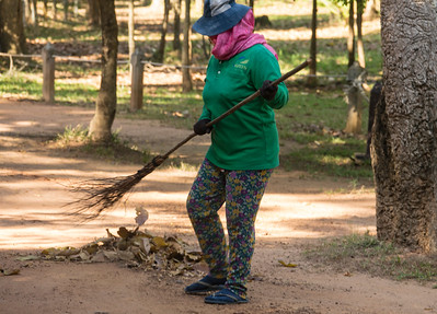 Sweeping the fallen leaves