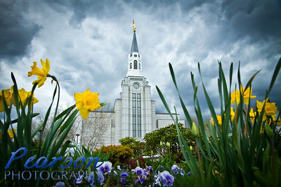 Boston, MA LDS Temple