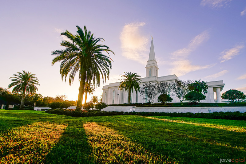 Orlando Temple Palm Tree Sunrise