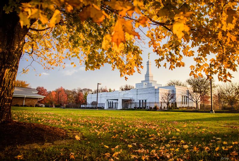 Nashville Temple - Autumn Light