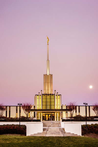 Atlanta Temple Pink Morning