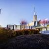 Atlanta Temple Sun and Flag