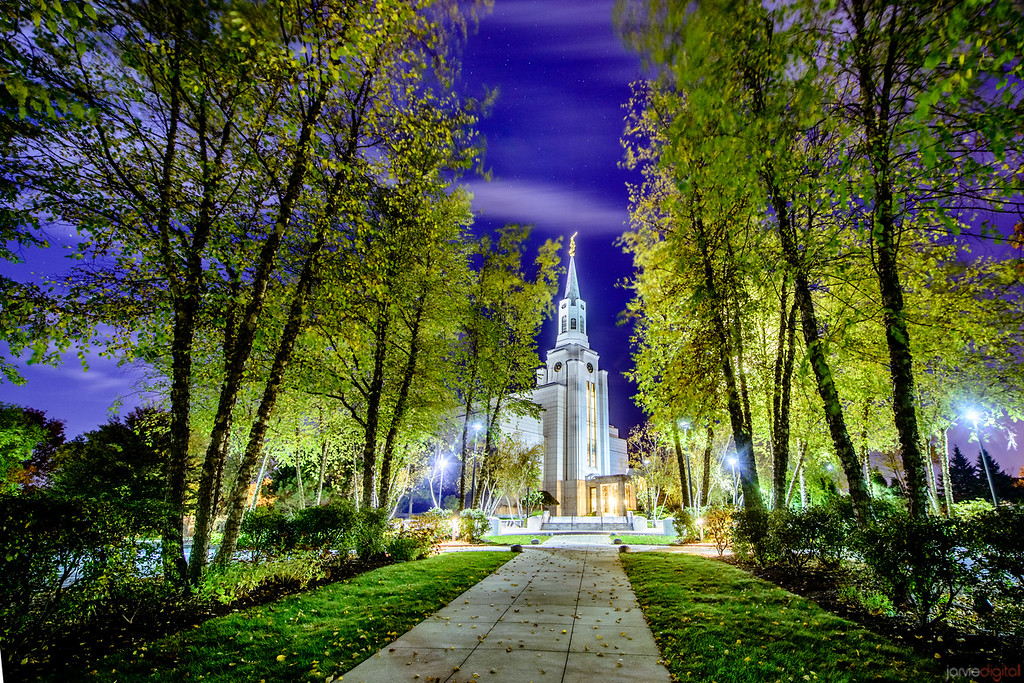 Boston Temple night trees