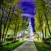 Boston Temple night trees