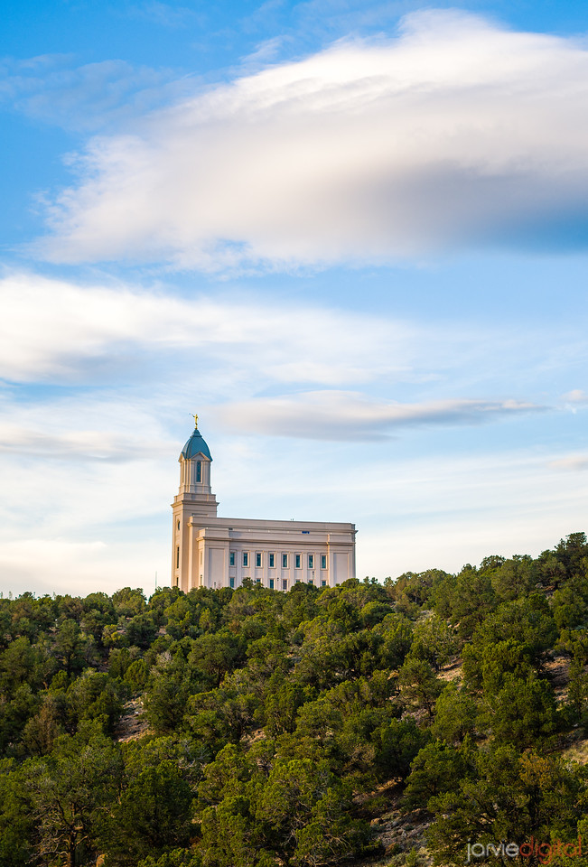 Cedar City Temple - Trees and skies