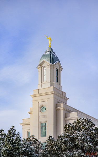 Cedar City Temple - Reaching up