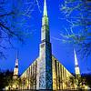 Chicago Temple Through Trees Vertical Twilight