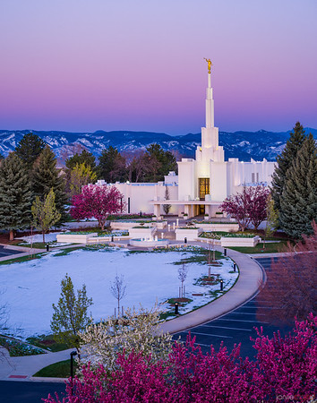 Denver LDS Temple - Purple Morning
