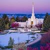 Denver LDS Temple - Purple Morning
