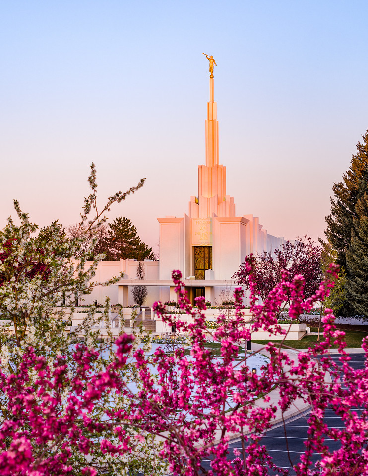 Denver LDS Temple - Sunrise Spring