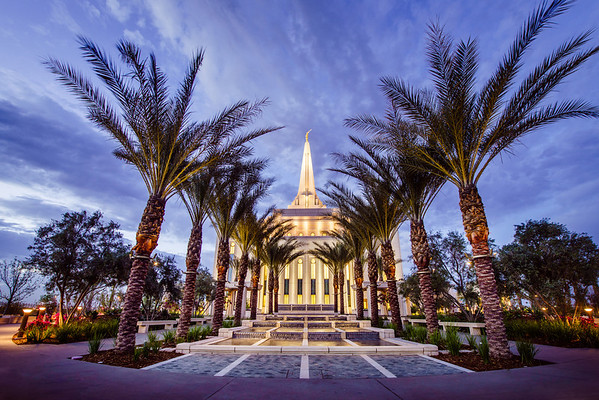 Gilbert Temple Palms