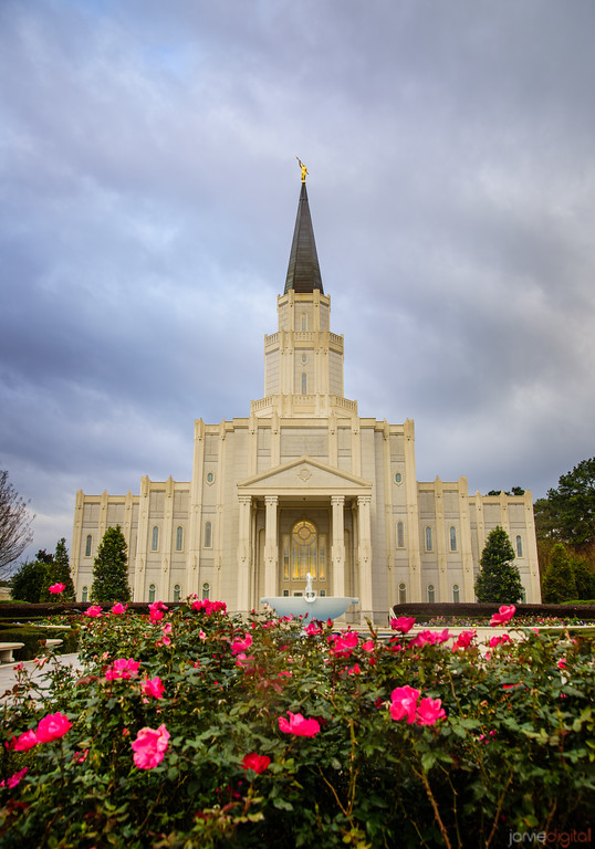 Houston Temple - Roses