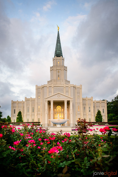 Houston Temple with Flowers