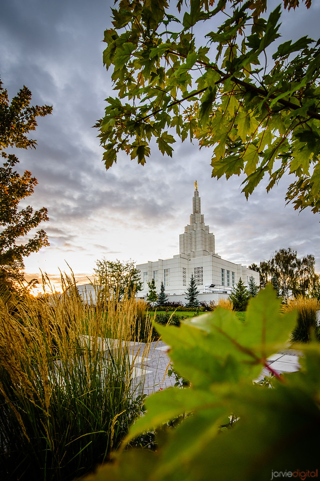 Idaho Falls Temple - Through Trees