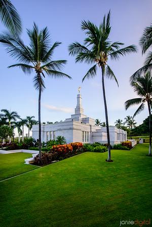 Kona Temple Palm trees