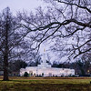 Baton Rouge Temple Field and Trees