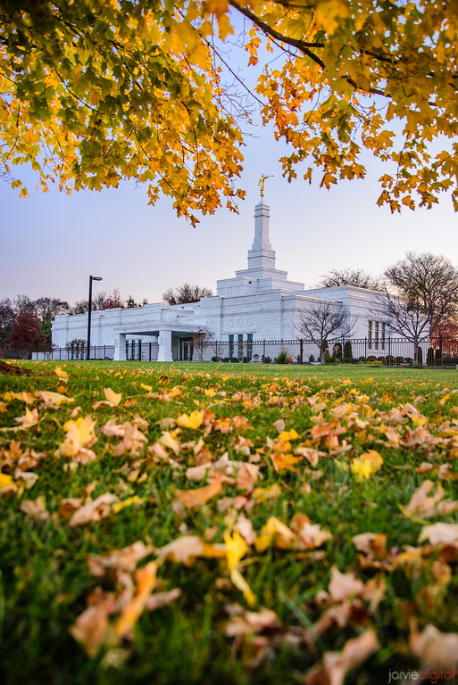 Nashville Temple - Fallen Leaves