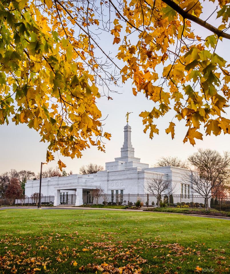 Nashville Temple - Fall trees