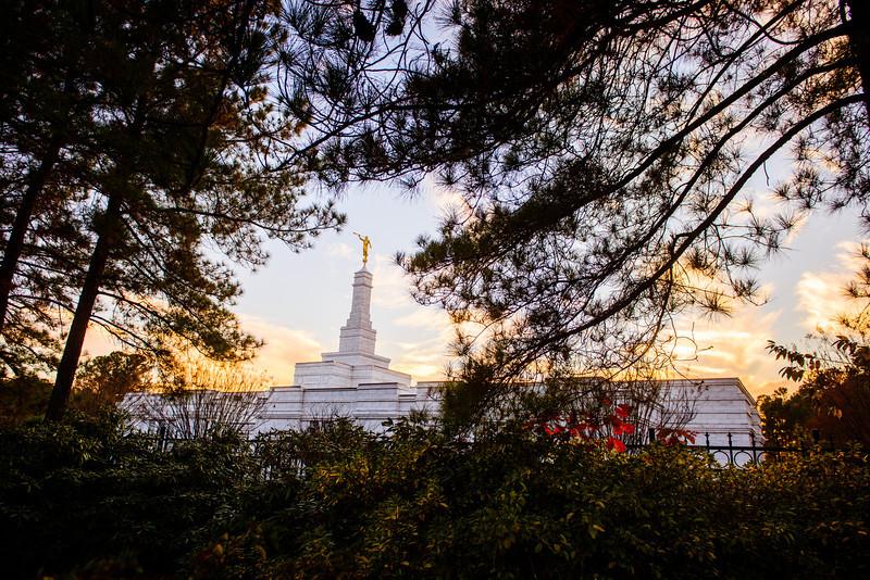 North Carolina Temple - Sunset through trees