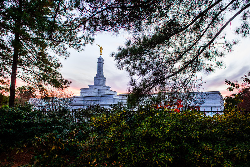 North Carolina Temple - Sunset and trees