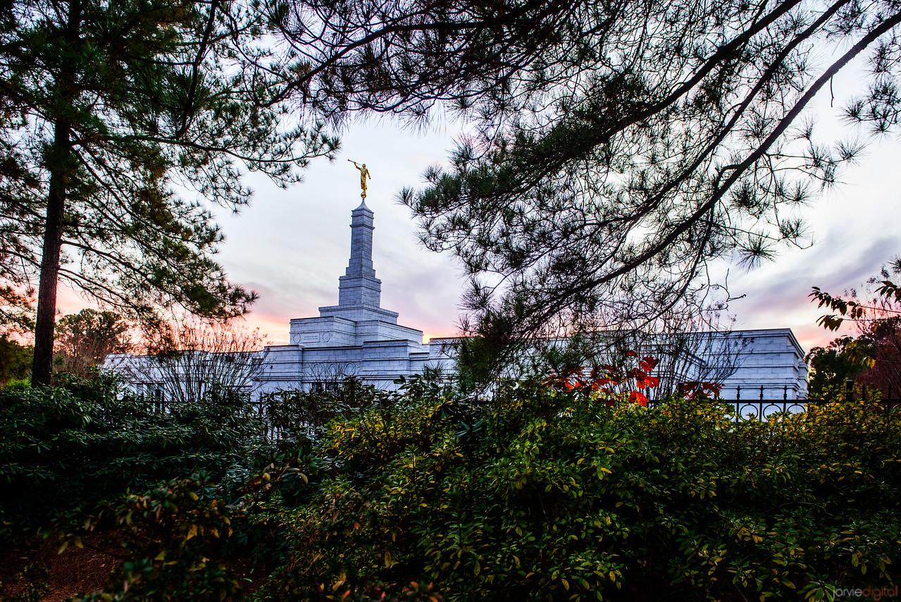 North Carolina Temple - Sunset and trees
