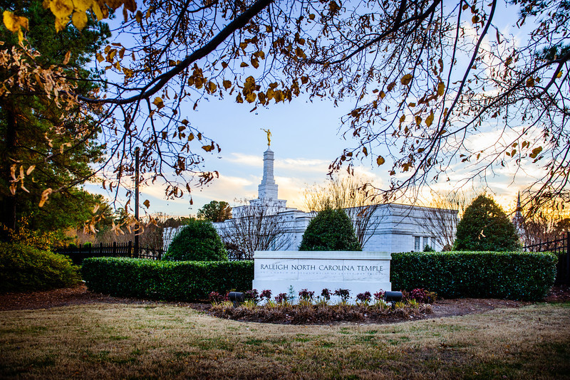 North Carolina Temple - Fall Sign