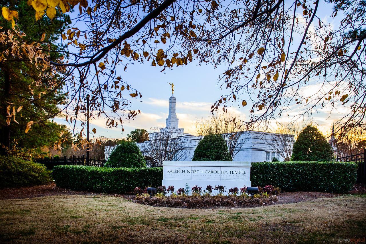 North Carolina Temple - Fall Sign