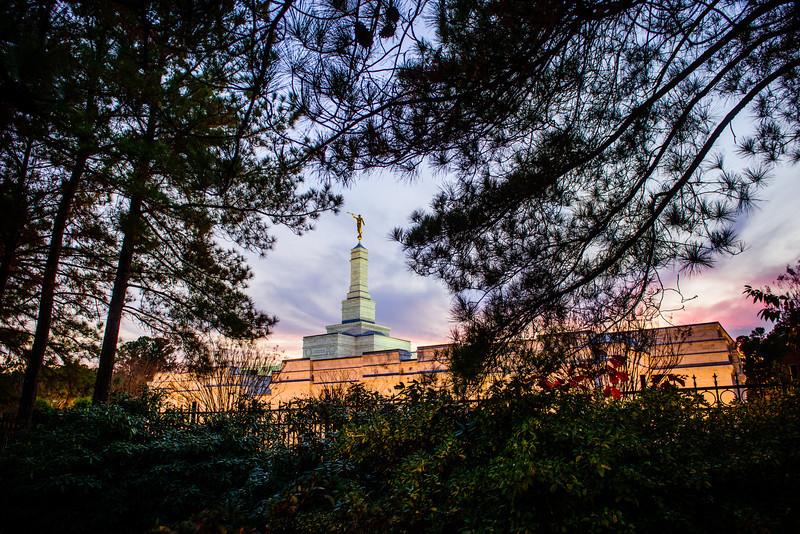 North Carolina Temple - Twilight and Trees