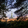 North Carolina Temple - Twilight and Trees
