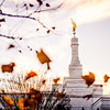 North Carolina Temple - Fall