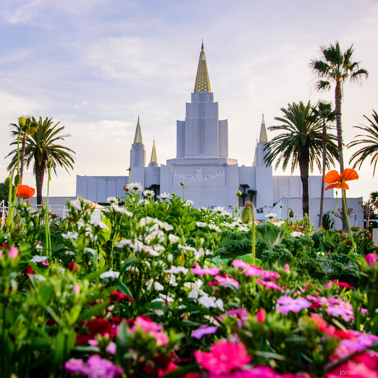 Oakland LDS Temple Flowers