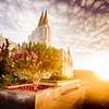 Oakland Temple - The Sun Rises