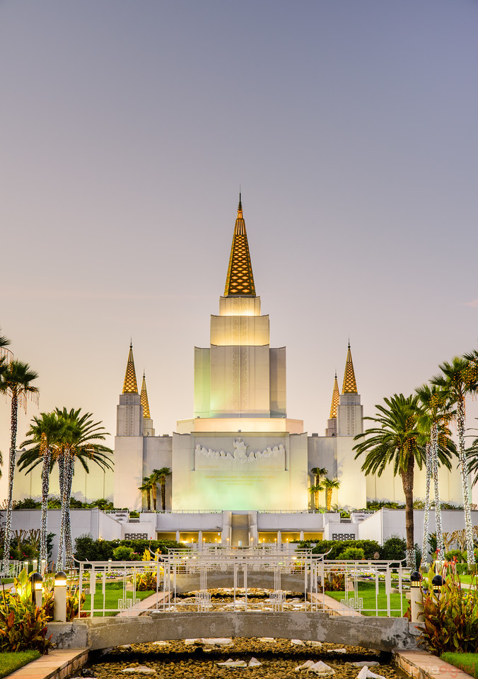 Oakland Temple - Christmas on the palms