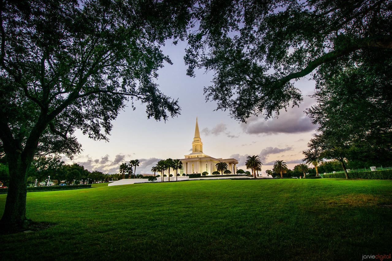 Orlando Temple Tree Framed